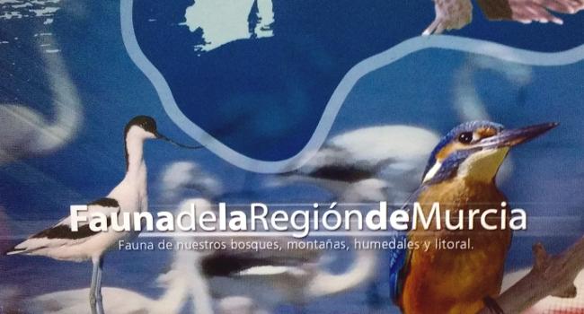 Vídeos de fauna de la Región de Murcia